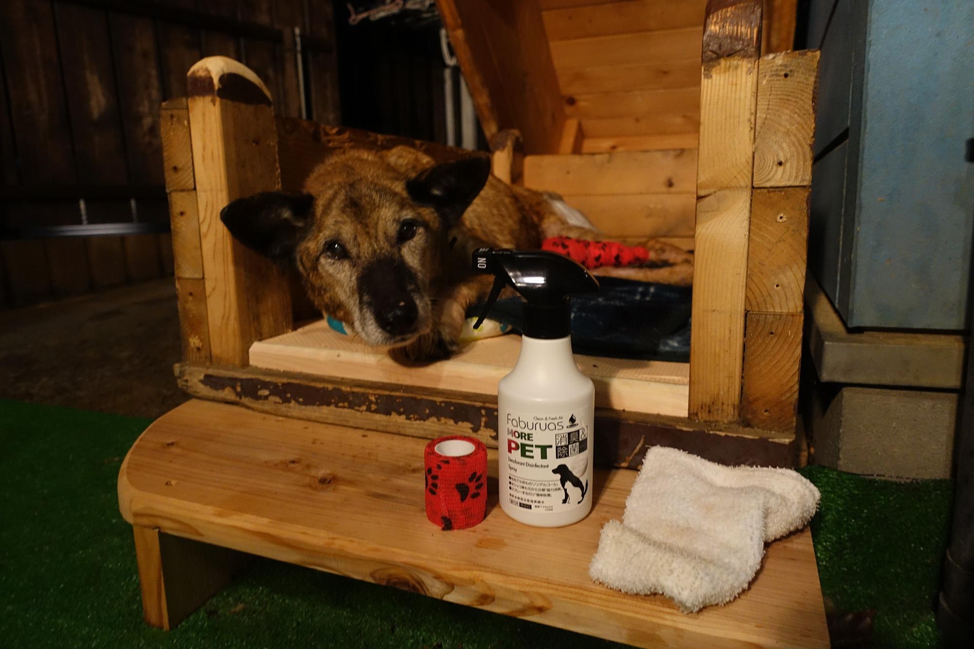 老犬介護用品  超微酸性次亜塩素酸水 faburuasファビュラス