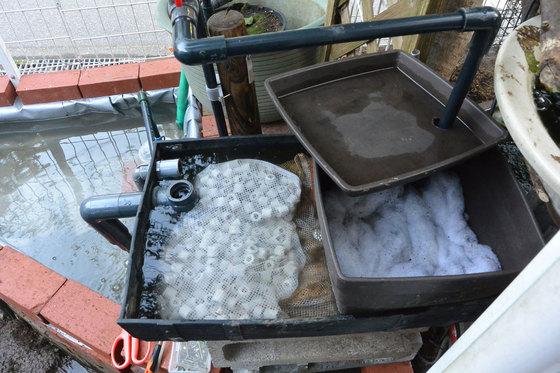 自作シート池が微妙に水漏れしたので作り直しました。